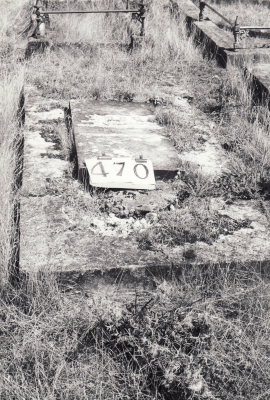 Historic picture of Makaraka cemetery, block MKH, plot 470.