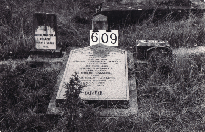Historic picture of Makaraka cemetery, block MKI, plot 609.