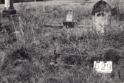Historic picture of Makaraka cemetery, block MKI, plot 629.