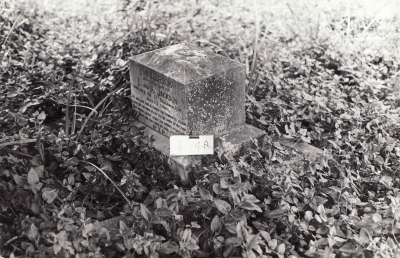 Historic picture of Makaraka cemetery, block MKJ, plot 874.