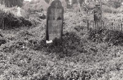 Historic picture of Makaraka cemetery, block MKOLD, plot 107.