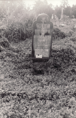 Historic picture of Makaraka cemetery, block MKOLD, plot 107.