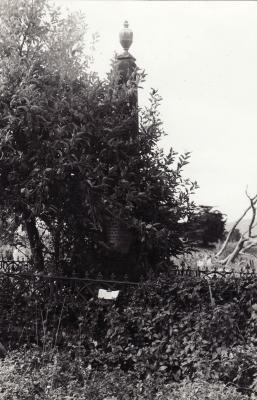 Historic picture of Makaraka cemetery, block MKOLD, plot 130.