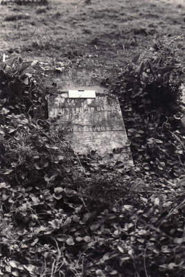 Historic picture of Makaraka cemetery, block MKOLD, plot 194.