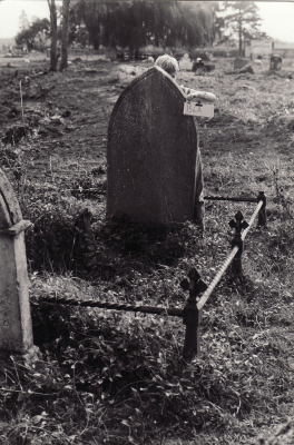 Historic picture of Makaraka cemetery, block MKOLD, plot 220.
