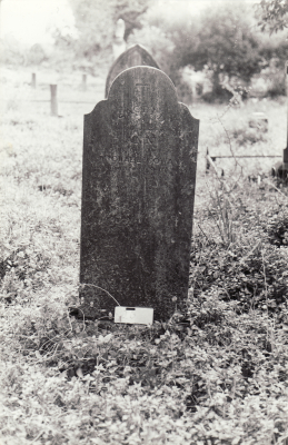 Historic picture of Makaraka cemetery, block MKOLD, plot 26.