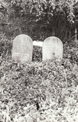 Historic picture of Makaraka cemetery, block MKOLD, plot 4.