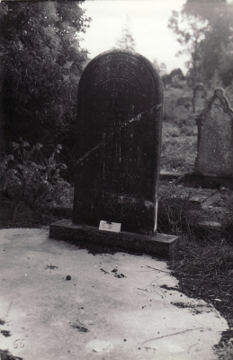 Historic picture of Makaraka cemetery, block MKOLD, plot 55.