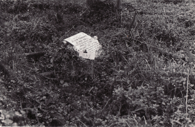 Historic picture of Makaraka cemetery, block MKOLD, plot 81.