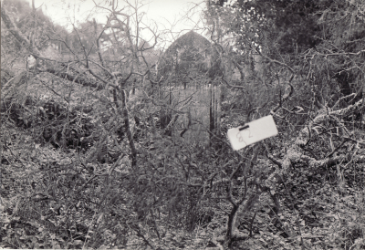 Historic picture of Makaraka cemetery, block MKOLD, plot 82.