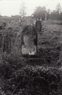 Historic picture of Makaraka cemetery, block MKOLD, plot 86.